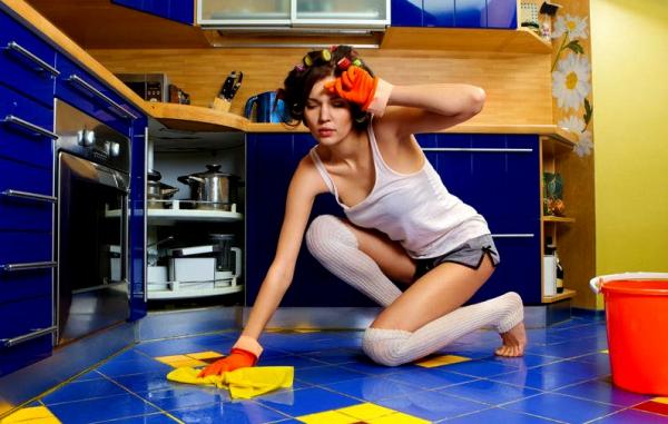 Кого мужчина любит - домохозяйку или домработницу? Домработница И Хозяин