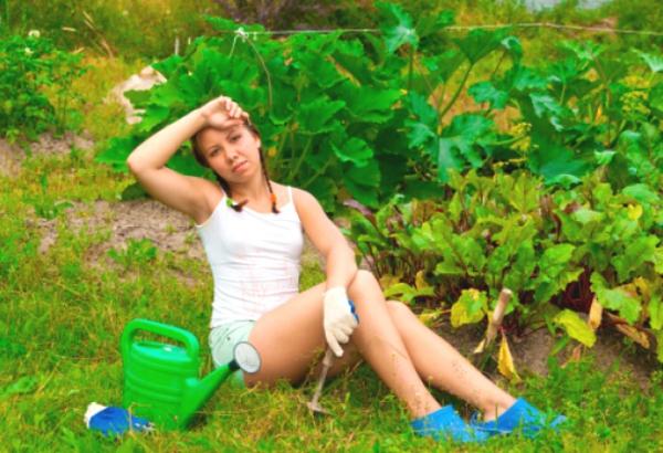 бабы на огороде-оа2