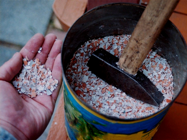 Как в домашних условиях сделать удобрения