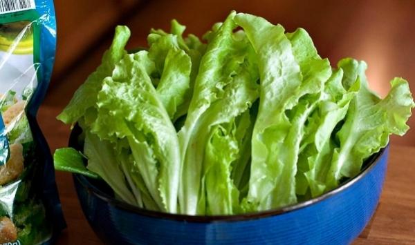 Фото разновидностей салатов